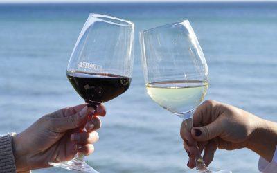 ¿Qué copa es mejor para cada vino?